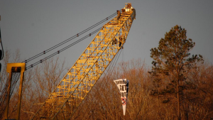 Cove-Point-crane-climbed-2-February-3-2015